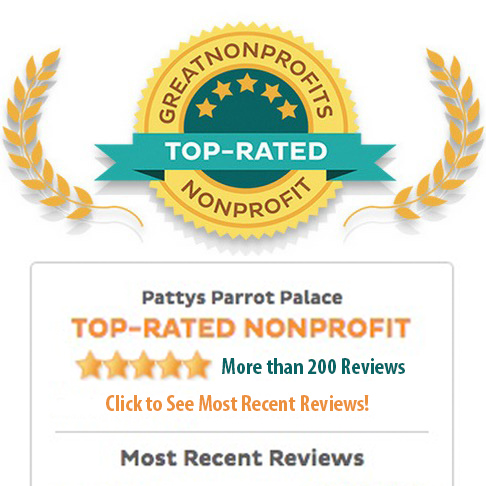 Great Non-Profits Seal: TOP-RATED